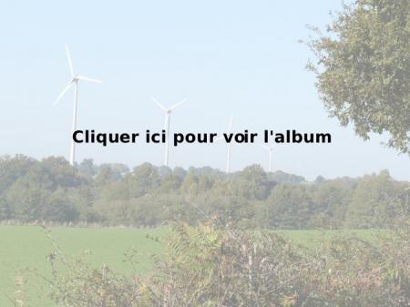 Parc éolien de Freigné (49)